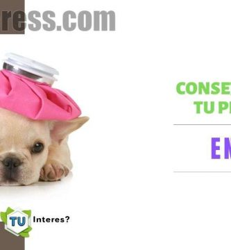 enfermedades de cachorros de 2 meses
