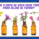 flores de bach ansiedad de fumar